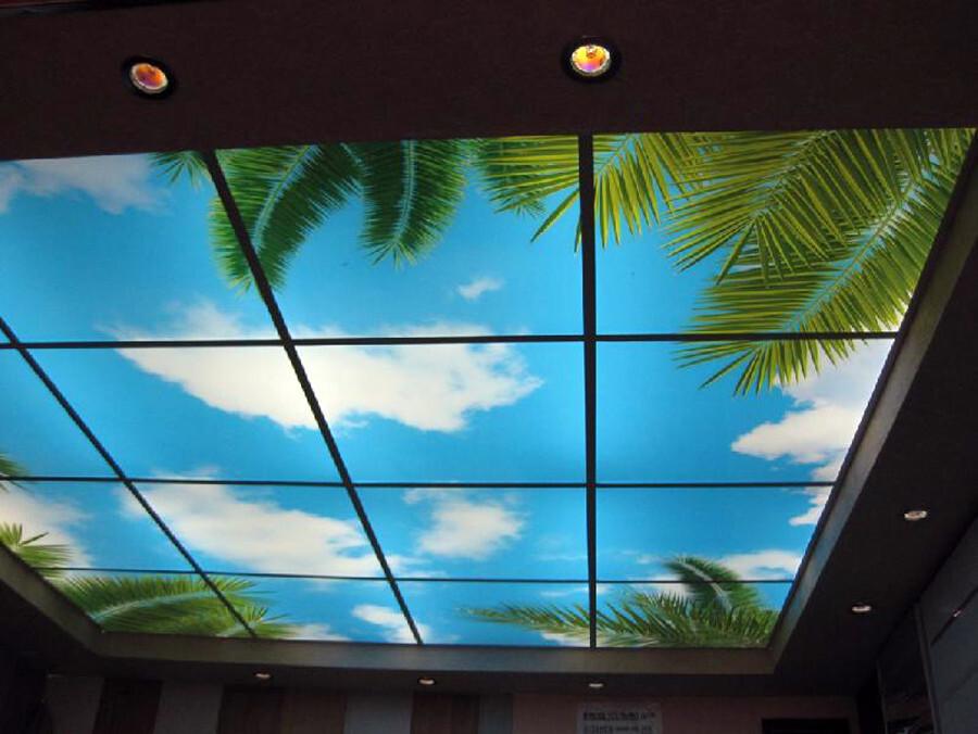 является фотопечать для потолка светопрозрачная зависимости особенностей